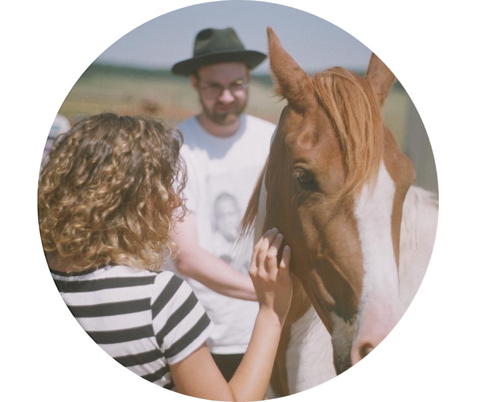 Pferdecoaching fuer Familien