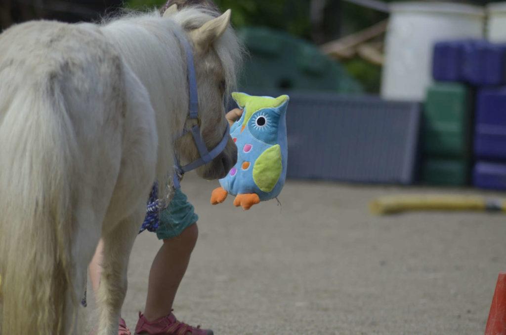 pferdegestuetztes Coaching Familien