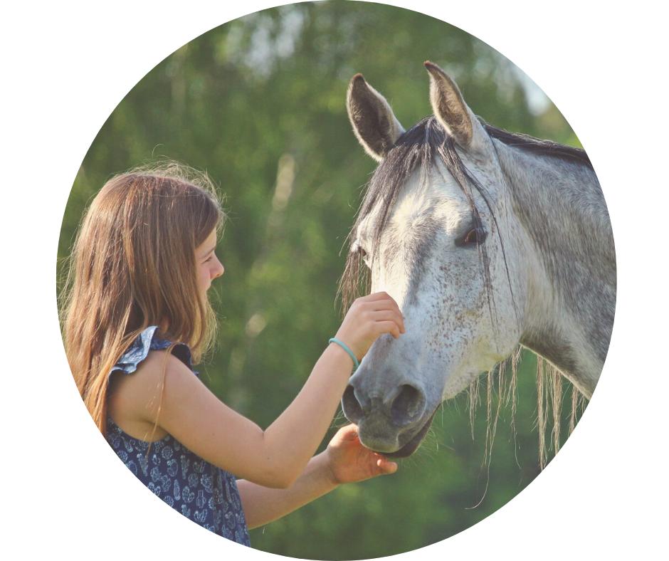 Coaching mit Pferd - Eva Fischer